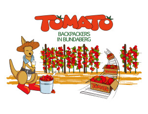 Tomato-Backpackers-300x231